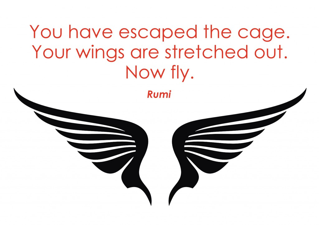 now fly - Rumi wings